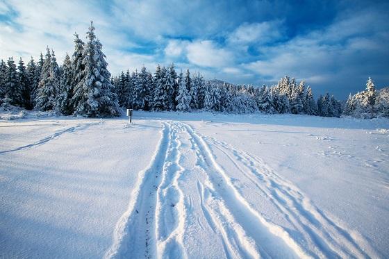 Фото В Коми вдвое увеличат финансирование на содержание зимних дорог