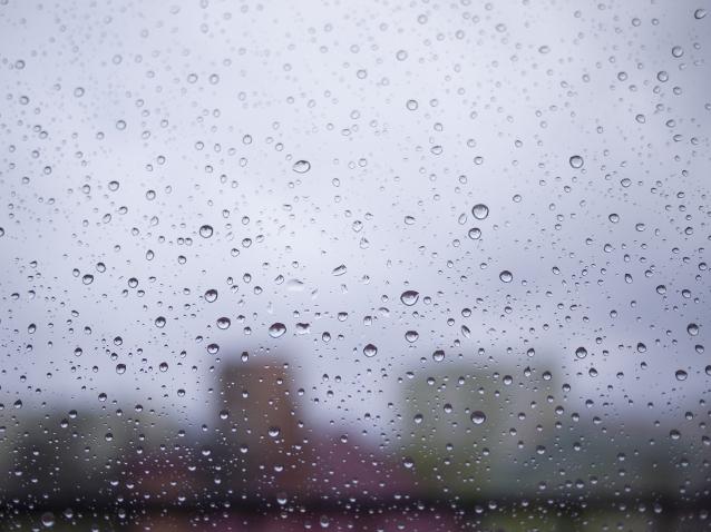 Фото В Кирове ожидаются дожди и похолодание до +4