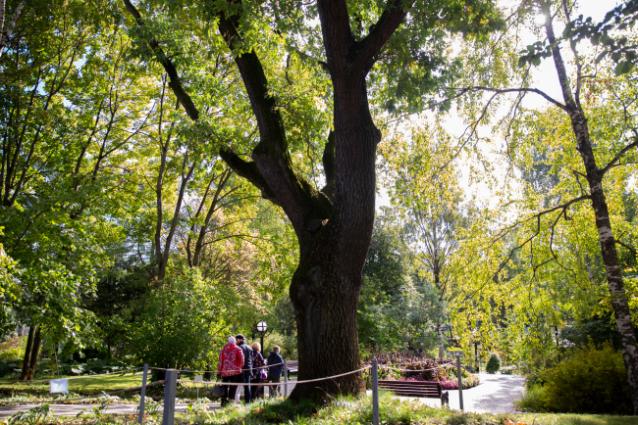 Фото Ботанический сад ВятГУ получил новые возможности