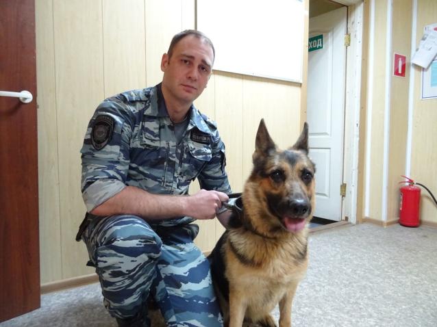 Фото В Коми собака Интрига помогла найти вора, который украл одежду соседки