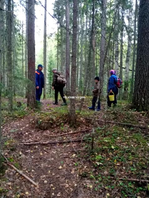 Фото В Коми спасатели вывели из леса заблудившихся женщину и ребенка