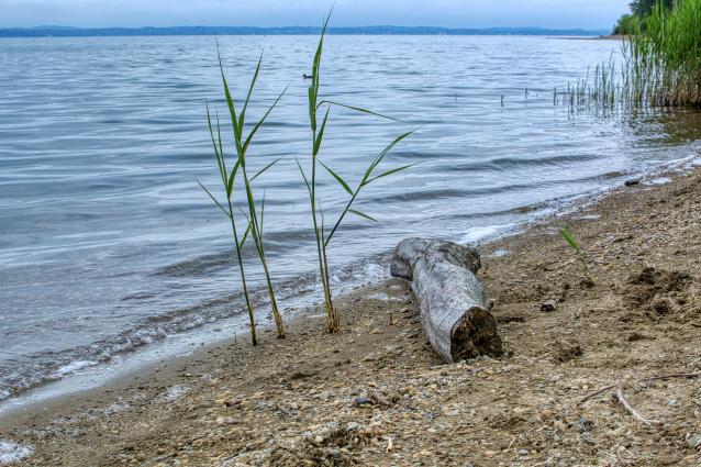 Фото В Коми пройдёт акция «Вода России»