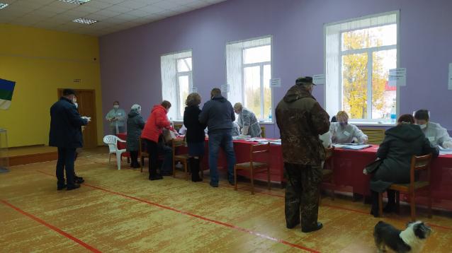 Фото В Коми на выборах работают 2184 наблюдателя